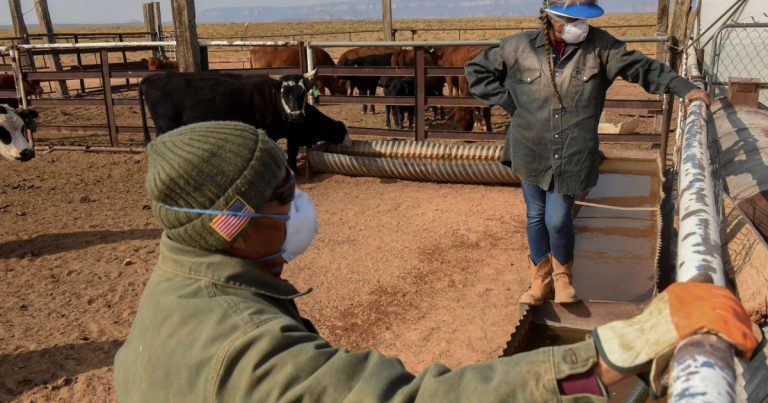 In Pictures: Navajo Nation's water-scarce life