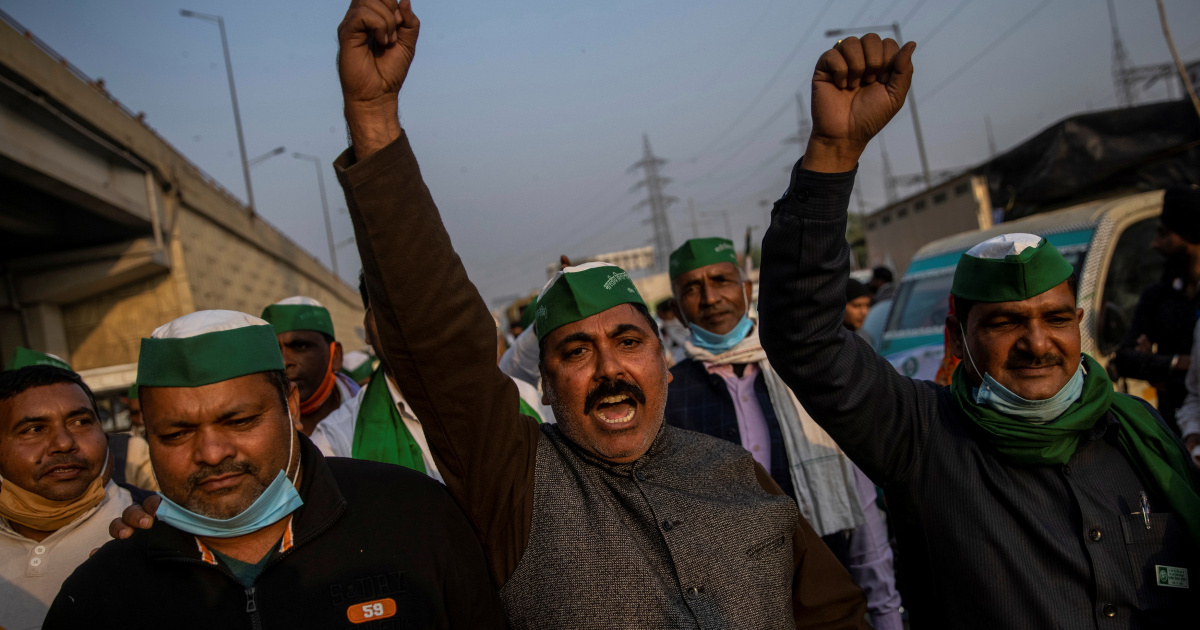 India farmers' protests: Gov't resumes talks with farmers